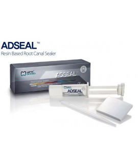 Adseal Resin Root Canal Sealer